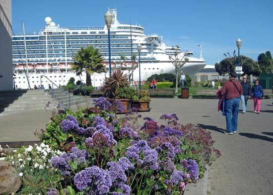 �������� Princess Cruises �ʹڹ����� Crown Princess ���ϼ��ձȺ����ȫ��16������������� 2019��2��3�ձ������� ��᷶����ϴ� ���߱��:7719020311