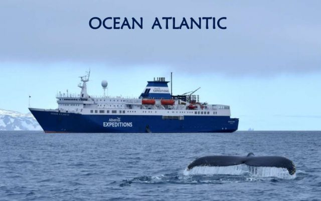 �²�̽�չ�˾ Albatros Expeditions �����������ٺ� Ocean Atlantic �ϼ�֮��-�����ż��16������̽�� 2019��11��18�ձ������� ����ŵ˹����˹�Ǵ� ���߱��:7719111811