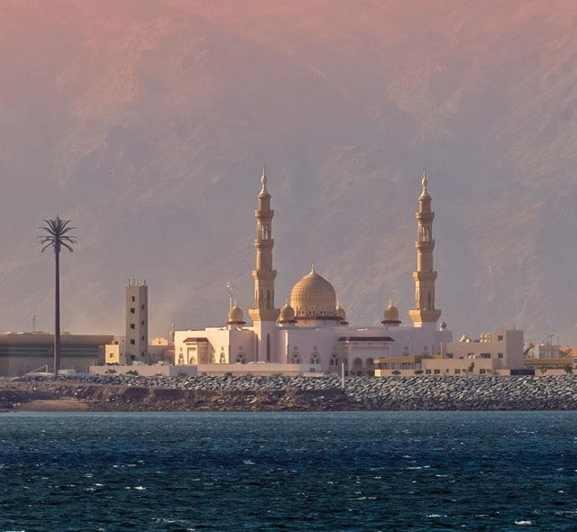 �����ߺ����� Regent Seven Seas Cruises �ߺ��캽�ߺ� Seven Seas Navigator 131������Ѳ���������� 2019-01-04��ɼ��Los Angeles���Ǵ� ���߱��:141221901046
